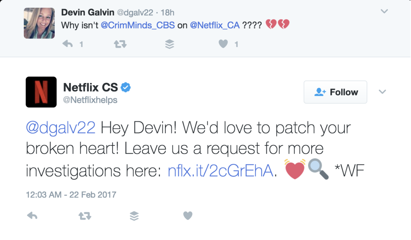 Netflix Customer Service Example