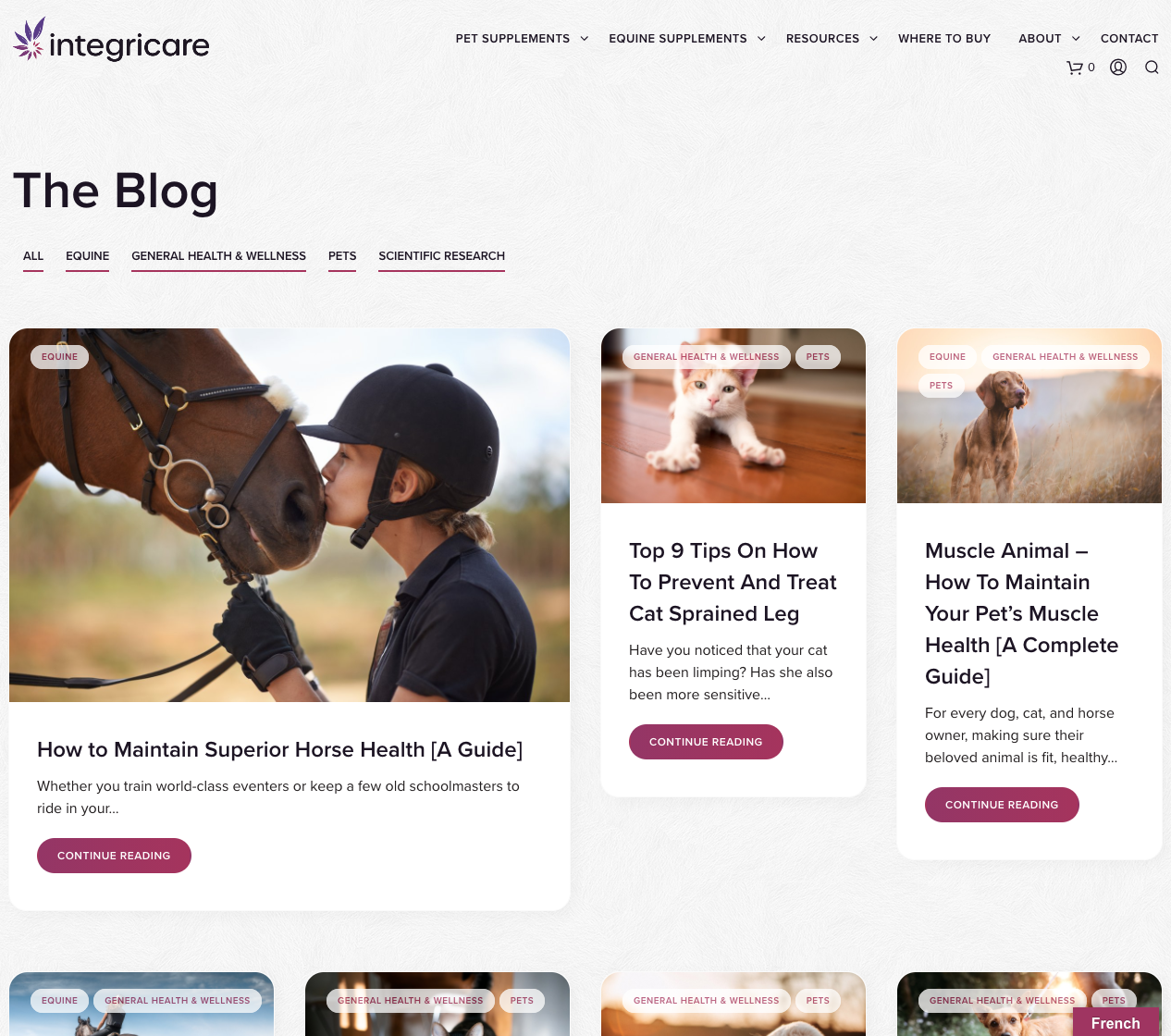 Blog Styling